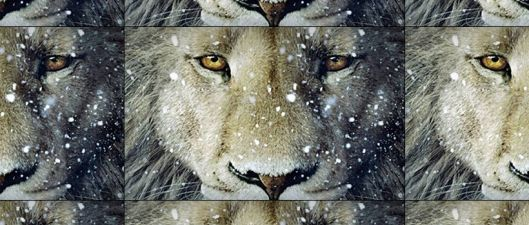 Narnia Lion